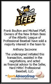 new-britiain-bees